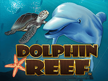 Выбор слота Дельфиний Риф – играть на деньги