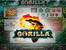 Играйте на демо Горилла без регистрации в казино онлайн